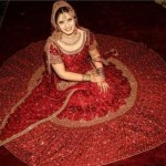 Indian Wedding Dresses, Lehengas and Sarees